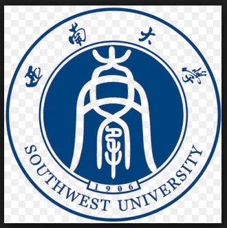 Southwest Medical University